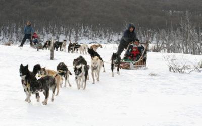 Nieve en Ushuaia: Actividades y excursiones exclusivas