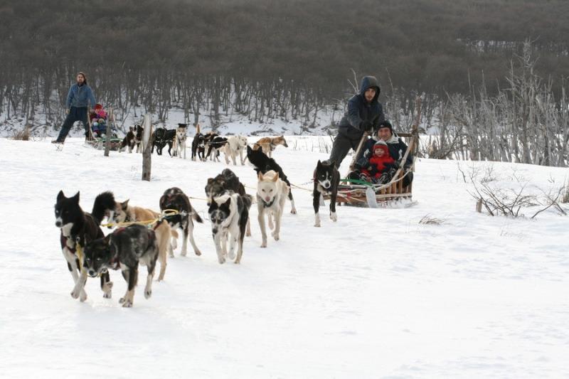 Invierno en Ushuaia: Actividades y excursiones exclusivas