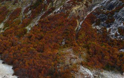 Ushuaia en otoño