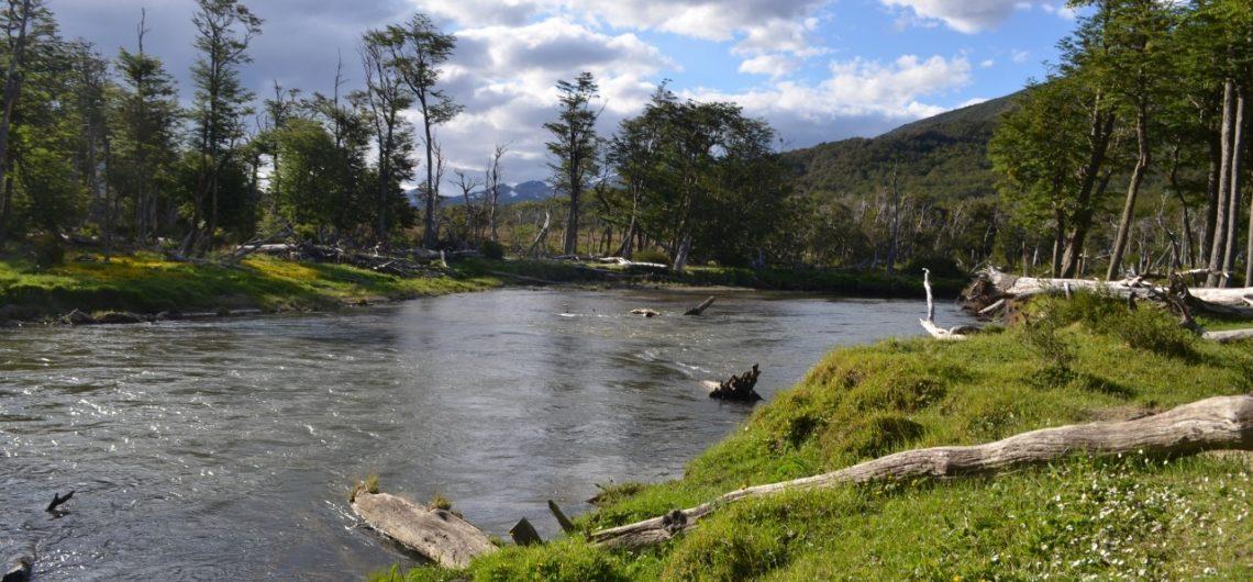 Ushuaia en verano