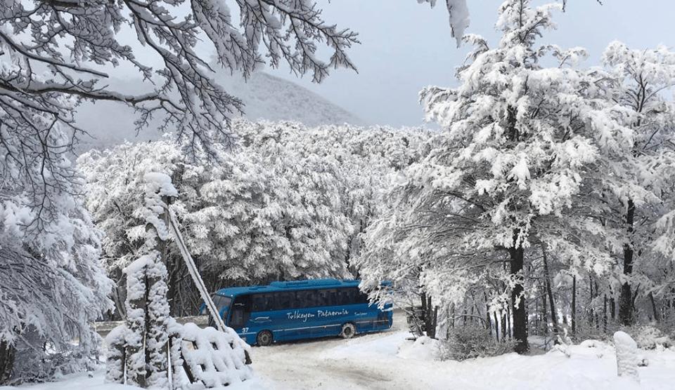 Qué ver en Ushuaia en invierno: 10 postales imperdibles